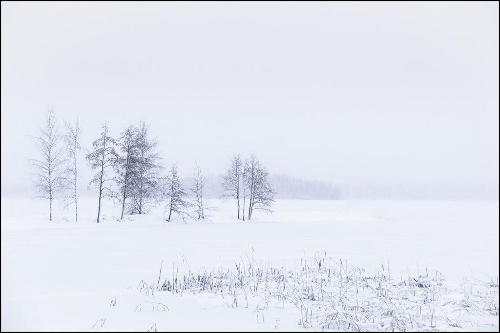 Finlande. Région de Saimaa © Yvan Martin 2019